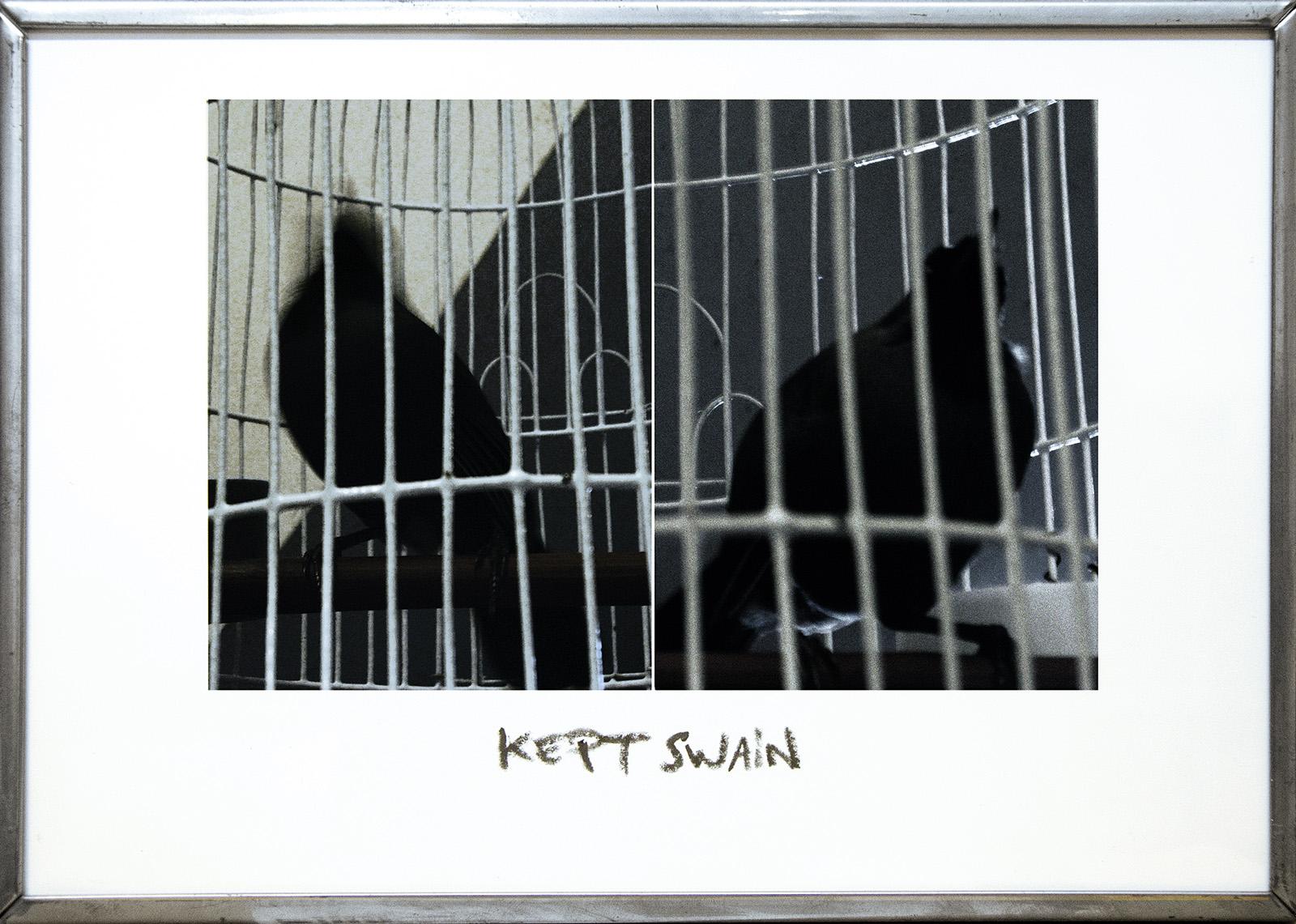 Marcel_Bataillard-serie_Twin_Pics-KeptSwain-web